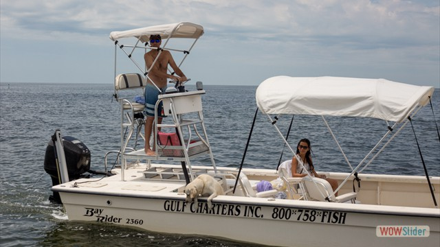 Scalloping Tour - River Safaris